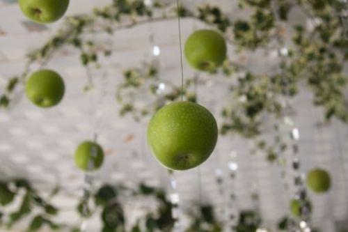 свадьба в стиле яблоки: для гостей